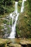 Wasserfall Wald des tropischen Regens Lizenzfreies Stockbild