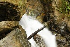 Wasserfall Wald des tropischen Regens Lizenzfreie Stockfotografie