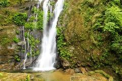 Wasserfall Wald des tropischen Regens Lizenzfreie Stockfotos