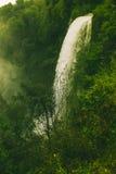 Wasserfall, Wald und grüne Vegetation Stockfotos