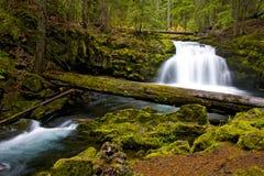 Wasserfall-Wasser, das über Felsen kaskadiert Lizenzfreie Stockfotos