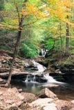 Wasserfall, wo Wasser bei Ricketts Glen State Park im klaren Herbstwetter sich trifft lizenzfreie stockfotos