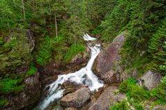 Wasserfall Wodogrzmoty Mickiewicza in Tatra-Bergen Lizenzfreie Stockfotos