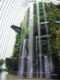 Wasserfall in Wolken-Wald Lizenzfreie Stockfotos