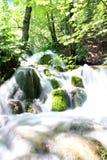 Wasserfall zwischen einem Wald Stockfotos