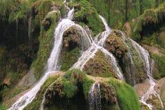 WasserfallBaume les Messieurs Lizenzfreie Stockfotografie