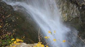 Wasserfalldetail stock video footage