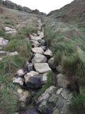 Wasserfallinsel von Gewicht England-Sommer Lizenzfreie Stockfotografie