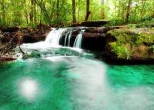 Wasserfalllandschaft. Stockbilder