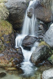 Wasserfalllandschaft Stockfotografie