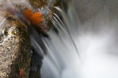 Wasserfallnahaufnahme Stockfoto