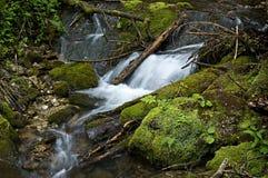 Wasserfallnebenfluß Stockfotografie