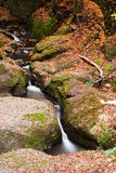 Wasserfalltreppe Lizenzfreie Stockbilder