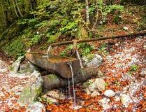 Wasserfrühling mit hölzernen Kanälen. stockfotos
