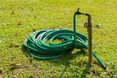 Wassergummischlauch auf grünem Rasen Stockfoto