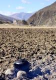 Wasserkocher auf dem Gebiet Stockfoto