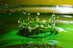 Wasserkrähe Lizenzfreie Stockbilder