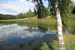 Wasserlandschaft Stockbild