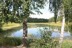 Wasserlandschaft Stockbilder