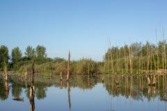Wasserlandschaft in den Niederlanden stockbilder