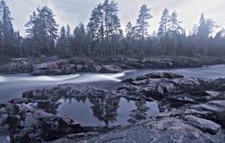 Wasserlandschaft mit Wald und Risse Lizenzfreie Stockbilder