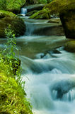Wasserlauf Stockbilder