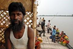 Wasserleben von Sundarban Lizenzfreie Stockbilder