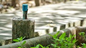 Wasserleitung im Garten lizenzfreie stockfotos