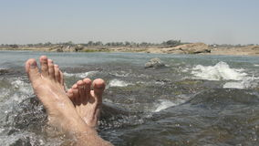 Wasserliebhaber Stockfotografie