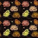 Wasserlilien auf einem schwarzen Hintergrund Stockbild