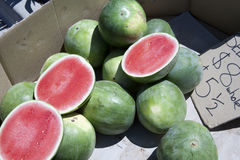 Wassermelone Stockbilder