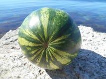 Wassermelone auf einem Seesommerlebensmittel Stockfotos