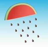 Wassermelone, die Hintergrund regnet Lizenzfreie Stockfotografie