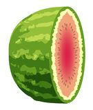 Wassermelone geschnitten zur Hälfte stock abbildung