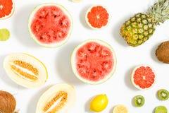 Wassermelone, Kokosnuss, Melone, Pampelmuse, Kalk, Zitrone und pineappl Stockbilder