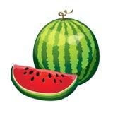 Wassermelone mit einem Scheibenschnitt lokalisiert auf weißem Hintergrund Vektor Stockfoto