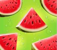 Wassermelone realistisch auf grünem Hintergrundvektor Lizenzfreie Stockfotos
