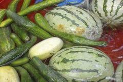 Wassermelone und Gurke getränkt im Wasser Lizenzfreies Stockbild
