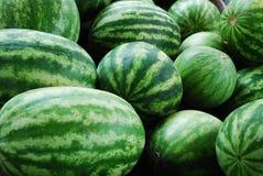 Wassermelonen Stockbilder