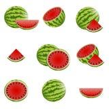 Wassermelonen-Ikonen Stockbilder