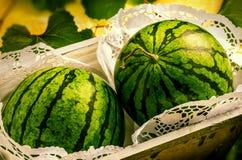 Wassermelonen im dekorativen Kasten Lizenzfreie Stockfotografie