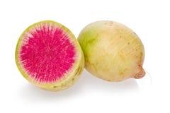 Wassermelonen-Rettich Stockbild