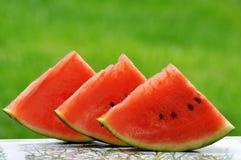 Wassermelonen-Scheiben Lizenzfreie Stockfotografie