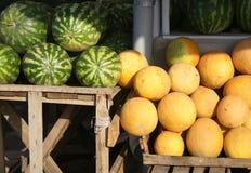 Wassermelonen und Melonen Stockfotografie