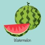 Wassermelonen-Vektor Obst und Gemüse Lizenzfreies Stockbild
