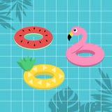 Wassermelonenananas der tropischen Frucht und Flamingorettungsring auf Querstation stock abbildung