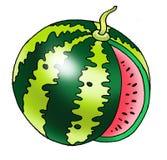 Wassermelonenbeerenkürbis-Fruchtstiel Lizenzfreie Stockfotos