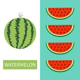 Wassermelonenfrucht-Ikonensatz Runde Wassermelone Rote Scheibe mit Samen in Folge Schneiden Sie Hälfte Gesunde Nahrung Flaches La stock abbildung