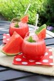 Wassermelonengetränk lizenzfreie stockfotografie