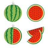 Wassermelonenikonensatz Ganzer reifer grüner Stamm Halbe Samen des Scheibenschnittes Grüne rote runde Fruchtbeeren-Fleischschale  stock abbildung
